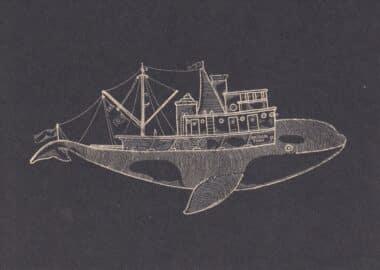 Orca Postcard Design from Whaleboats: A Kyler Martz Postcard Set