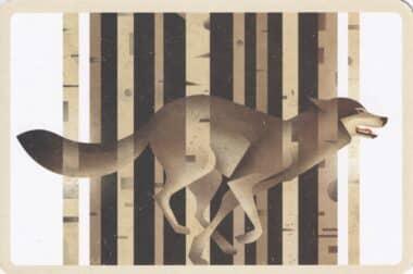 Running Wolf in Forest Illustration Postcard