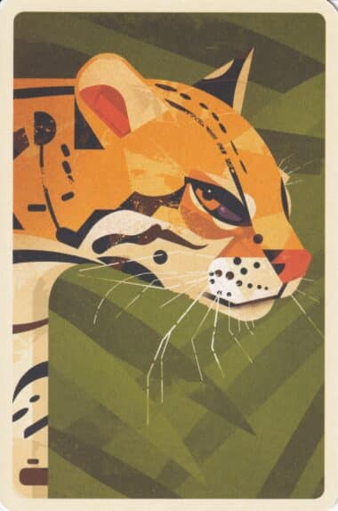 Ocelot in Jungle Illustrated Postcard