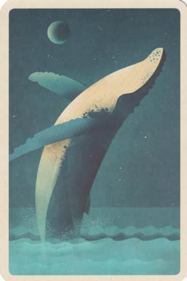 Jumping Humpback Whale at Night Illustrated Postcard