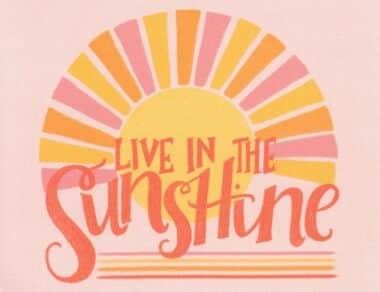 Live in the Sunshine Sun Postcard