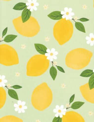 Pretty Lemons Fruit Pattern Postcard